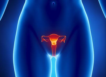Infektionen im Vulva- und Vaginalbereich